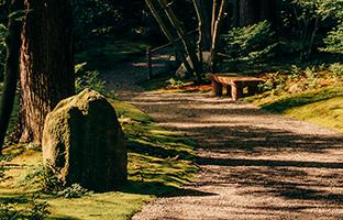 Jardins botaniques sur les campus : leur valeur s'étend bien au-delà de la beauté